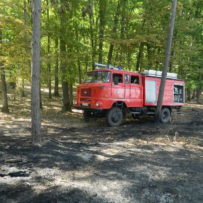 Négy hektáron égett a cserjés